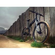 ETNA Foldable Electric Mountain Bike - Dual Power